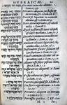Marco Marini - Hortus Eden grammatica linguae sanctae - 1585
