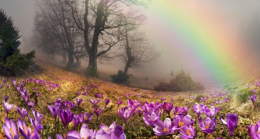 Maria Venturini - Fate che aprile non passi invano nella vostra vita