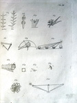Leonardo da Vinci - Trattato della pittura tratto da un codice della Biblioteca Vaticana - 1817