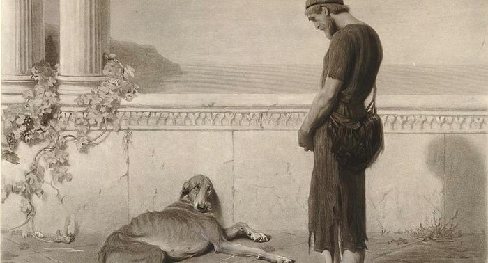 Perché l?amicizia di Ulisse e Argo non finirà mai - di Carlo Picca