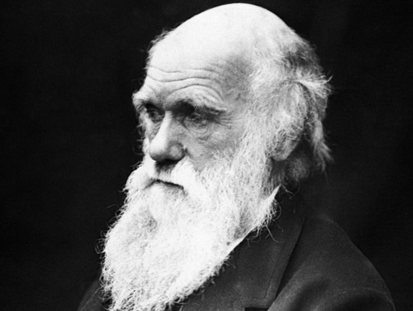 Charles Darwin - Se vivessi un'altra volta