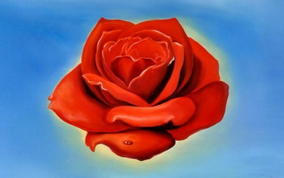 Emily Dickinson - Questa piccola rosa nessuno la conosce