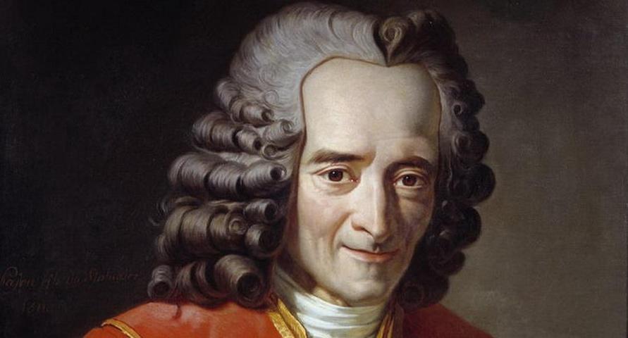 Voltaire - L'amicizia è il matrimonio dell'anima