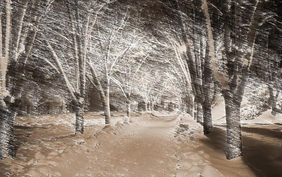 Antonia Pozzi - Notturno invernale
