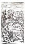 Un classico della letteratura venatoria: Erasmo di Valvasone - La caccia - 1602 (con 6 belle tavole)