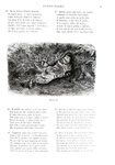Ludovico Ariosto - Orlando furioso. Corredato da 517 disegni di Gustavo Doré - Milano 1894