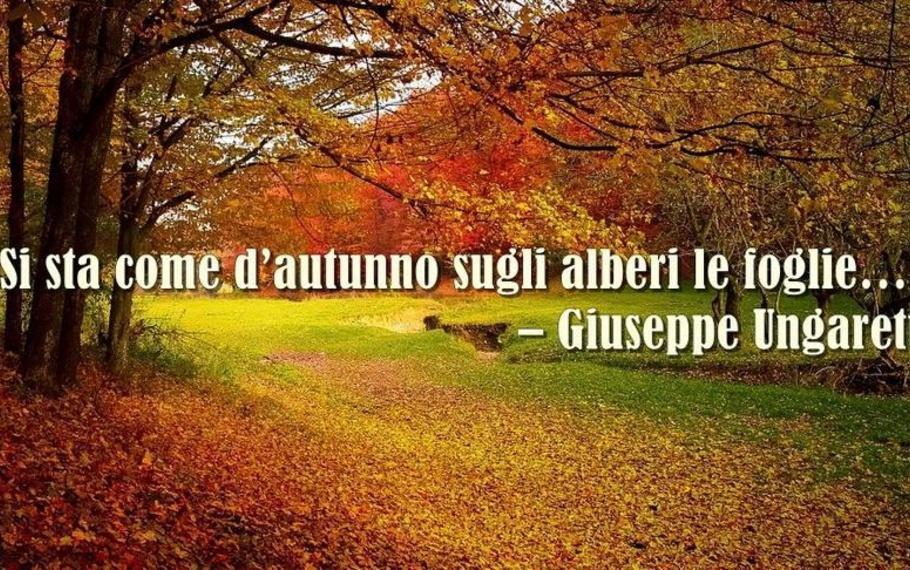 """Perché in questi giorni """"si sta come d?autunno sugli alberi le foglie"""""""