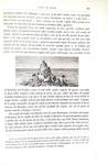 Darwin - Viaggio di un naturalista intorno al mondo - Torino 1872 (rara prima edizione italiana)