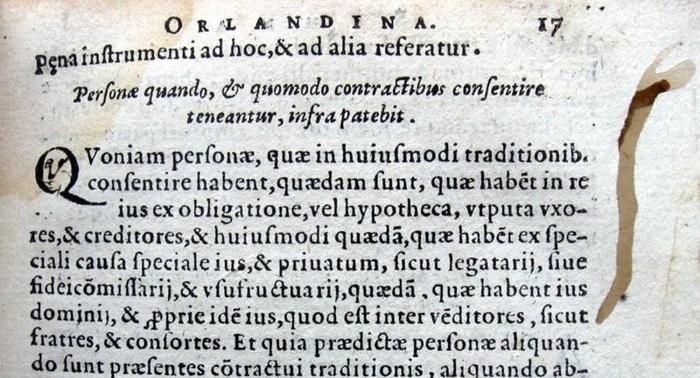 Come conservare correttamente un libro antico: suggerimenti relativi all'infestazione da tarli e simili