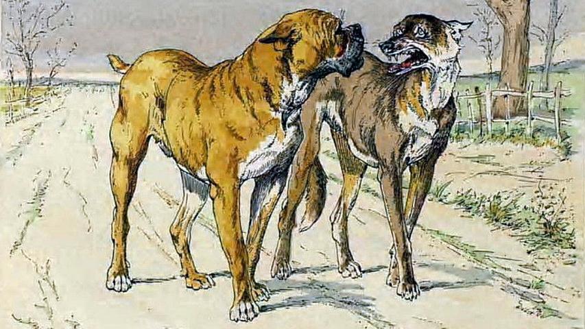 Esopo - Il lupo e il cane