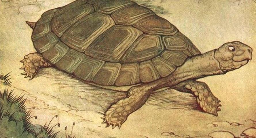 Esopo - Zeus e la tartaruga
