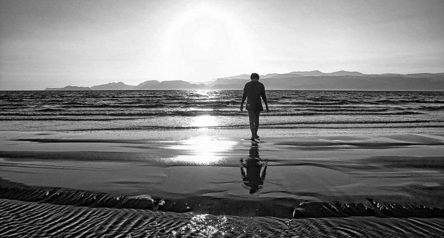 Arthur Schopenhauer - Solitudine e pace interiore