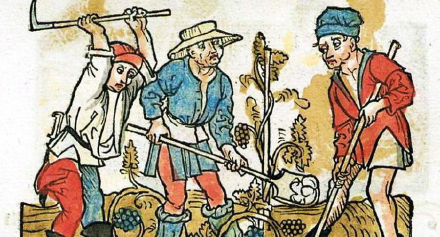 Esopo - Il contadino e i figli discordi