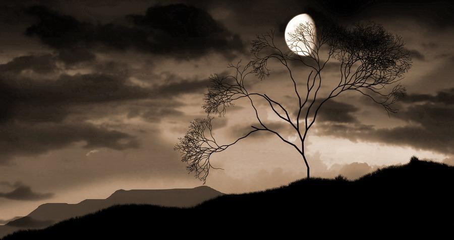 Fernando Pessoa - Penso a te nel silenzio della notte