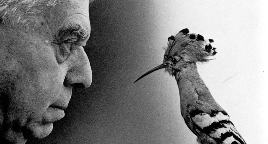 Eugenio Montale - Chissà se un giorno butteremo le maschere